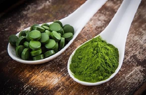प्रोटीन का अच्छा स्रोत है स्पिरुलिना - Spirulina Good Source of Protein in Hindi