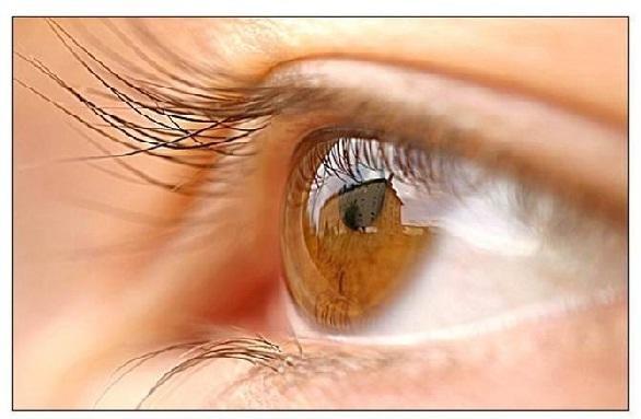 स्पिरुलिना का उपयोग है आंखों के लिए फायदेमंद - Spirulina Benefits for Eyes in Hindi