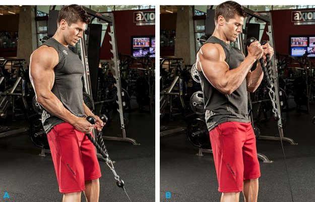 स्टैंडिंग बाइसेप्स केबल कर्ल एक्सरसाइज़ बढ़ाए बाइसेप्स को - Biceps banane ke liye standing biceps cable curl exercise in hindi