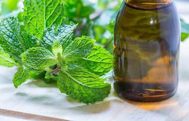 पुदीने का तेल है त्वचा की खुजली में उपयोगी - Peppermint oil for itchy skin in Hindi