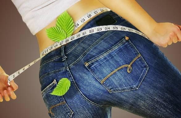 स्टीविया के लाभ वजन कम करने के लिए - Stevia Good for Weight Loss in Hindi